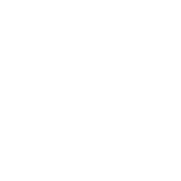 icon linking to our instagram page